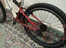 دراجة هوائيةRally
