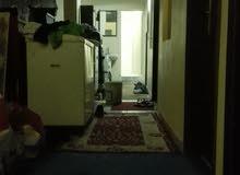 لدينا غرف عربي عزابي حمام مشترك بخيطان 50223939