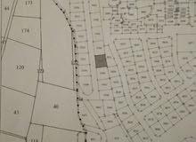 ارض تجارية او سكنية قرب شارع الاردن منطقة ابو نصير قطعة رقم 5505