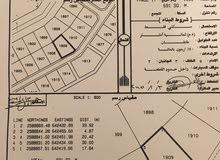 فرصة قطعة أرض سكنية بولاية العامرات مدينة النهضة مربع17