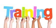 looking for Training opportunity  /  باحثه عن فرصة تدريب