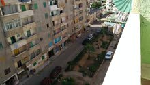 apartment More than 5 in Alexandria for sale - Mandara