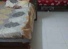جوز سرائر خشب ماليزي