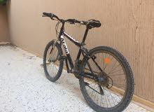 دراجة للبيع رقم24 البيع عن طريق الشيك او كاش