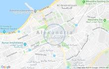 شقتين ف الدور السابع الاخير بدون اسناسير مساح الشقة 80م
