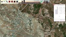 ارض للبيع شفا بدران - حوض المكمان 1