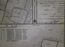للبيع ارض 8050م زراعية فضاء  في عبري الاخظر سلطنة عمان