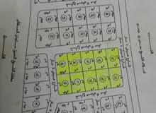 ارض مساحة 6000م عبارة عن بلك من عشر قطع مساحة كل قطعة المخطط  بحجة والكهرباء