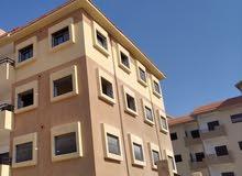 شقق سكنية في الشام الجديدة للبيع بأسعار مميزة