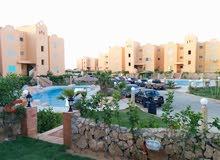 للايجار الساحل الشمالي شاليه 238م مكيف مع جنينه خاصة على حمام السباحة (متاح من 4 سبتمبر)