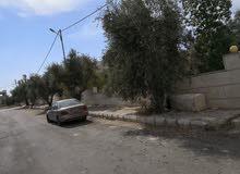 قطعه أرض مميزه مقابل مدرسه عين جالوت خلف التجاري للبيع
