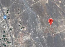 للبيع أرض سكنيه في عز2 خلف محطة كهرباء منح مفتوحه من 3 جهات مستويه ونظيفه وفرصه
