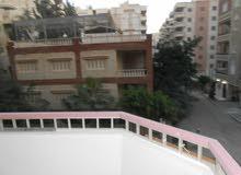 شقة طابق تاني ناصية مسجلة بجوار الخدمات والبحر في شاطئ النخيل