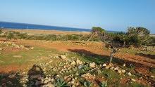 اراضي سياحية تقابل البحر ( ساحل كرسة)