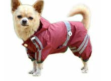 Rain Jacket For Cats And Dogs