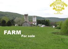 مزرعه للبيع في الاردن - جرش بمساحة 7500م
