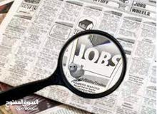 محاسب مصري حديث التخرج يبحث عن عمل