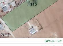 ارض للبيع في الكرك في سول مساحة 9708 متر مربع