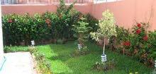 مطلوب شقة ارضية مع حديقة يفضل خلدا