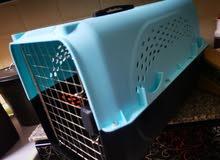 قفص للحيوانات +قطة مجانا للتبني