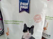 اكل قطط باو باو التركي المميز