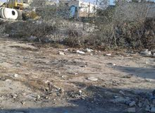 عمان ماركا قرية أبو صياح