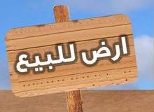 """أرض لقطة للبيع """"قيراط"""" بموقع متميز بمدينة أدفو"""