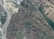 قطعة ارض للبيع في جرش مطلة على منطقة البركتين و وادي الدير الغربي