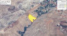 ارض للبيع عراق الامير مساحه 40دونم على مجرى الماء بسعر 10 دنانير المتر
