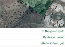8دونمات قوشان مستقل من اراضي شمال عمان منطقة السليحي وامكانية فرز  اربع دونمات