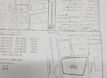 بيع ارض سكني تحاري ف محافظه البريمي