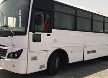 تاجير جميع أنواع الباصات الحديثة والوانيتات/ والصالون