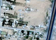 قطعة ارض للبيع في معان لواء الحسينيه لقطه بسعر مغري
