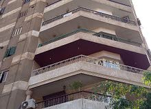 apartment is available for sale - Nasr City