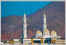 سجل للبيع درجة للمتازة فيه 10 مذوانيات مدفوعه و ثنين مهندسين ف عمان