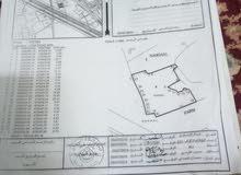 للبيع ارض زراعيه صحار الشيزاو موقع ممتاز 1563 متر