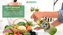 ECOLYTE FRUITS AND VEGETABLES DISINFECTANT 1 LITRE