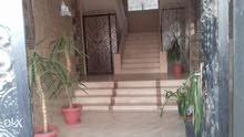 شقة للبيع ب المنصورة قولنجيل شارع سعد زغلول علي النيل مباشرة