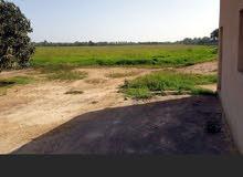 ارض زراعية في سلطنة عمان للبيع مساحتها 101717متر مربع