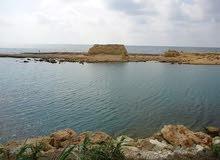 أرض سياحية عالبحر مباشرة للبيع