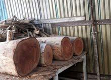 قص شجر جرجي ومثمر وبيع وشراء الخشب