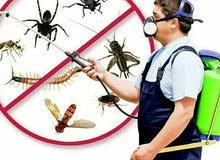 الروضه للتنظيف ورش الحشرات تنظيف الفلل والشقق والكنب والسجادبالبخارمع التعقيم وا