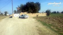 ارض زراعية + بيت يحتاج إلى الترميم ومساحته 400 متر