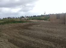 مزرعة 20 فدان على الطريق السياحي لبحيرة قارون و شلالات الريان