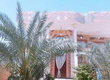5 rooms  Villa for sale in Basra city Abu Al-Khaseeb