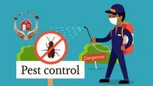 خدمات مكافحة الحشرات مع الضمان