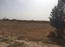 ارض هكتار و3000 متر  الواجهه  70 متر