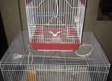 قفص عصافير ( عدد 2 )