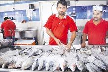 مطلوب بائع أسماك  Required Salesman  Fish