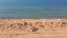 استراحه جنب البحر في القره بوللي.